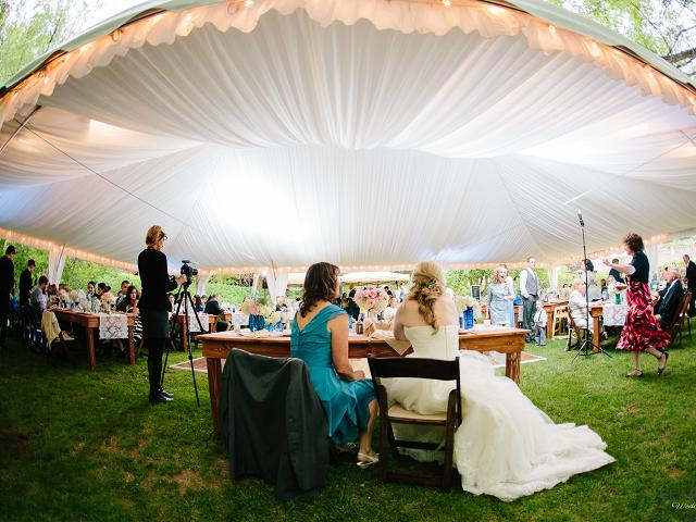 Canopy liner and Farm Tables