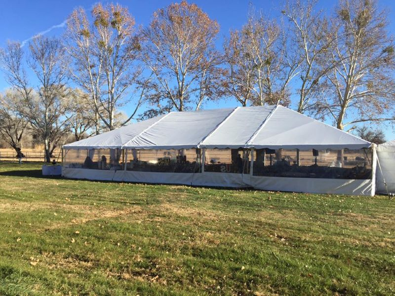 Tent Outside - Clear Walls