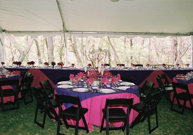 Black Folding Chairs, Clear sidewall