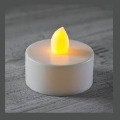Rental store for LED CANDLE, TEA LIGHT in Cottonwood AZ