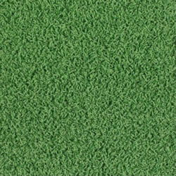 Where to rent CARPET,GREEN 12 x20 in Cottonwood AZ
