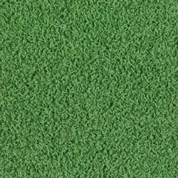 Where to rent CARPET,GREEN 12 x50 in Cottonwood AZ