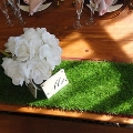 Rental store for TABLE RUNNER SYNTHETIC GRASS in Cottonwood AZ